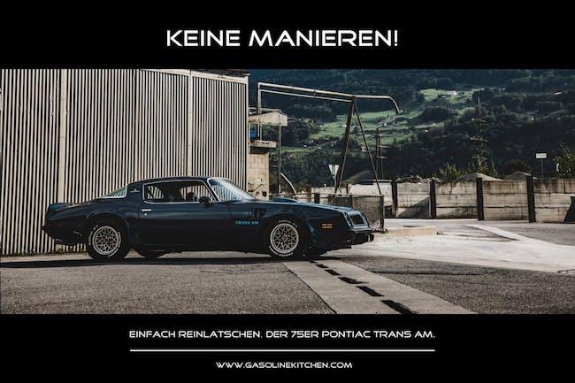 coupe Pontiac Firebird Trans Am SD-455 Tribute