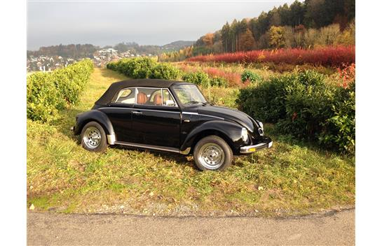 cabriolet VW Beetle Käfer 1303