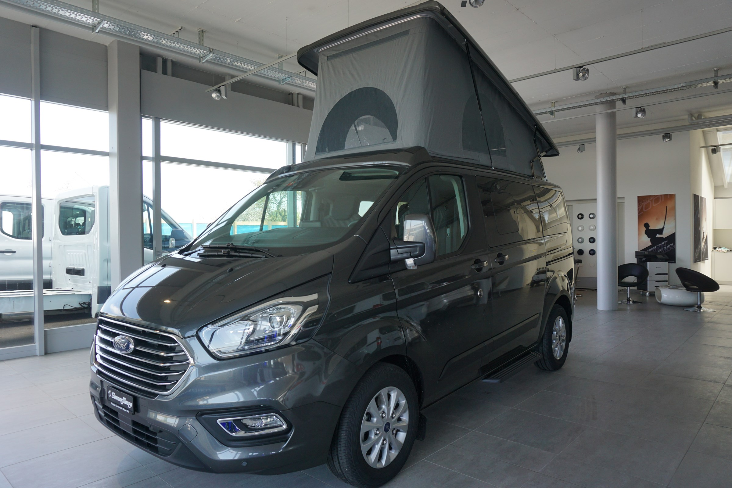 bus Ford Tourneo Transit Tourneo Euroline (Frida)
