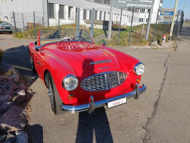 cabriolet Austin Healey BN6
