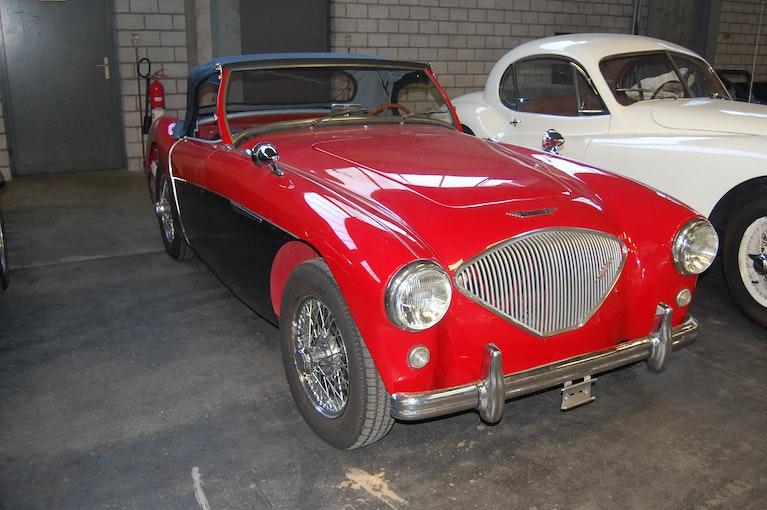 Austin Healey 10 km CHF82'000 - kaufen auf carforyou.ch - 1