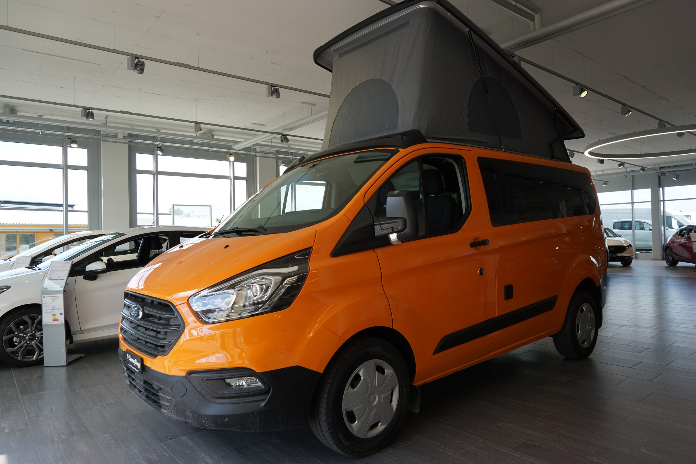 bus Ford Transit Custom Tourneo Euroline (Emma)