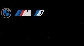 Alpina Group Widnau AG logo
