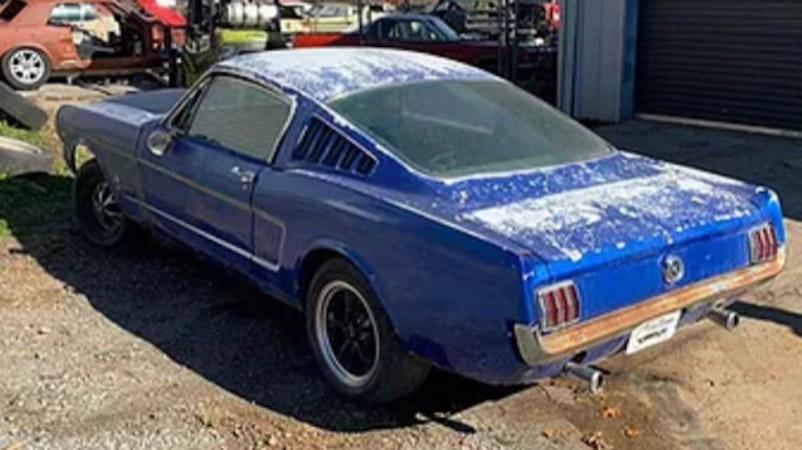 Ford Mustang 1965 Ford Mustang Fastback 289 V8 Projekt 5000 Km Für 28000 Chf Kaufen Auf Carforyou Ch