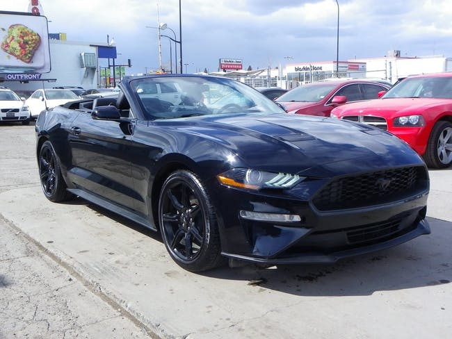 Ford Mustang Convertible 2.3 EcoBoost 22'200 km CHF38'900 - buy on carforyou.ch - 1