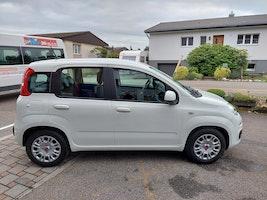 Fiat Panda 1.0 MHEV Easy 50 km CHF15'300 - buy on carforyou.ch - 3